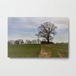 Northwest Alabama Metal Print
