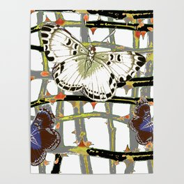 #2 PURPLE-WHITE MOTHS  ON BLACKTHORN LATTICE BRANCHES ART Poster