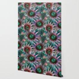 Succulents Flower Garden Wallpaper