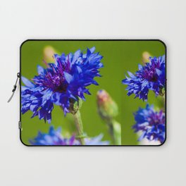 Blue cornflowers in summer Laptop Sleeve