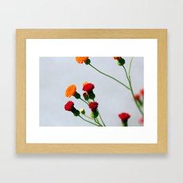 Reaching Out Framed Art Print