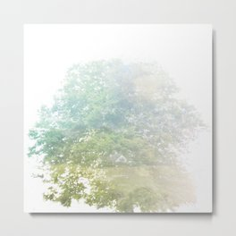 Where the sea sings to the trees - 9 Metal Print