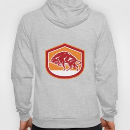 European Bison Charging Shield Retro Hoody