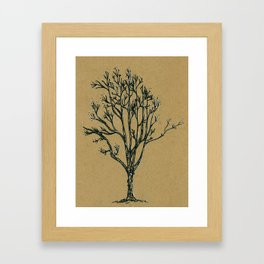 February Tree Framed Art Print