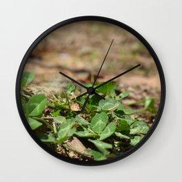 Clover Community Wall Clock
