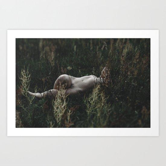 _DSC3556 Art Print