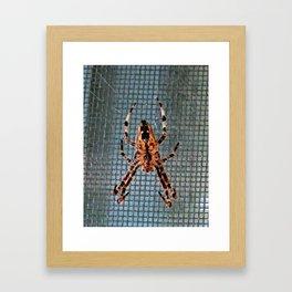 Under Eight Framed Art Print