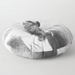 Horse Photograph in Iceland Floor Pillow