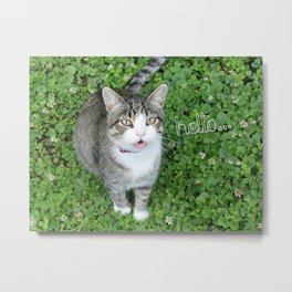 Cat in Clover Saying Hello Metal Print