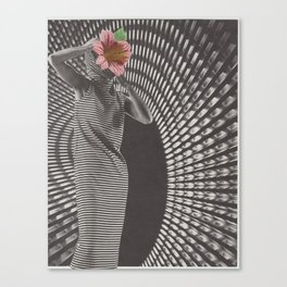 Forced Zones Canvas Print