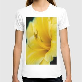 Day Lily-4 T-shirt