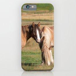 Gypsy Vanner Horses 0271 - Colorado iPhone Case