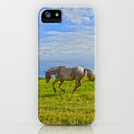 A Fine Case of the Happies iPhone Case