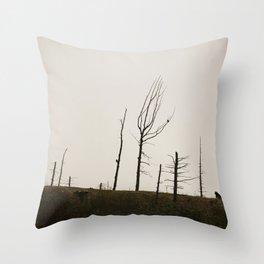 Black Bear Ridge Alaska Throw Pillow