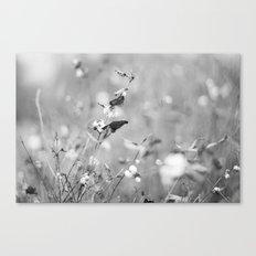 Autumn forest Canvas Print