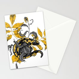Salamander and Snails Stationery Cards