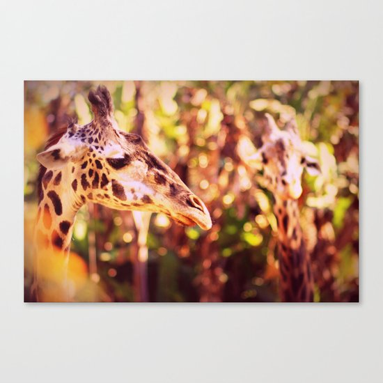 abstract with two giraffes Canvas Print