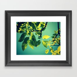 we are young Framed Art Print