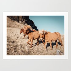 A Horse of Course Art Print