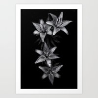 Backyard Flowers In Black And White 7 Art Print