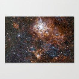 Tarantula Nebula in the Large Magellanic Cloud Canvas Print