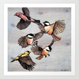 Flying Finches and Chickadees Art Print