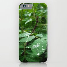 Receiving iPhone 6s Slim Case