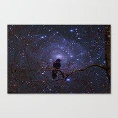 Black crow in moonlight Canvas Print