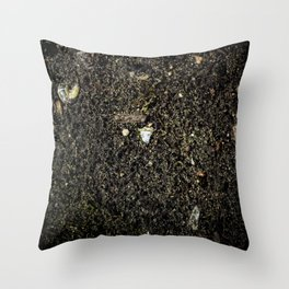 Staring at The Ground Throw Pillow