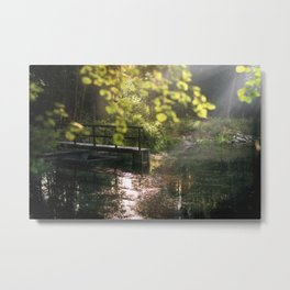 Calm forest II Metal Print