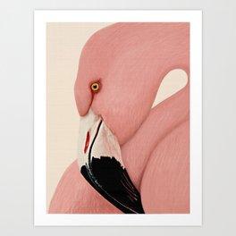 Flamingo art, Tropical decor, Flamingo print, Pink wall art, Flamingo decor, Bird print Art Print