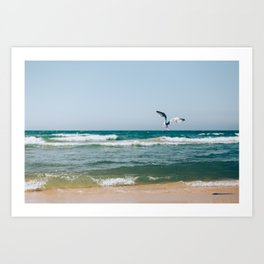 Gull Flight Over Lake Michigan Art Print