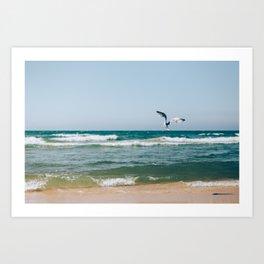 Gull Flight Over Lake Michigan Art Print