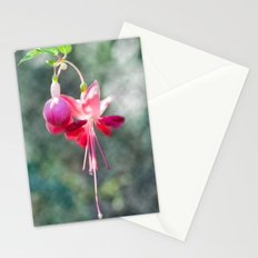 Fushia 54 Stationery Cards