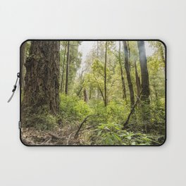 Schrader Old Growth Forest Laptop Sleeve