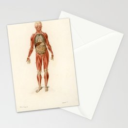 Vintage Print - Universal Dictionary of Natural History (1849) - Human Muscles Stationery Cards