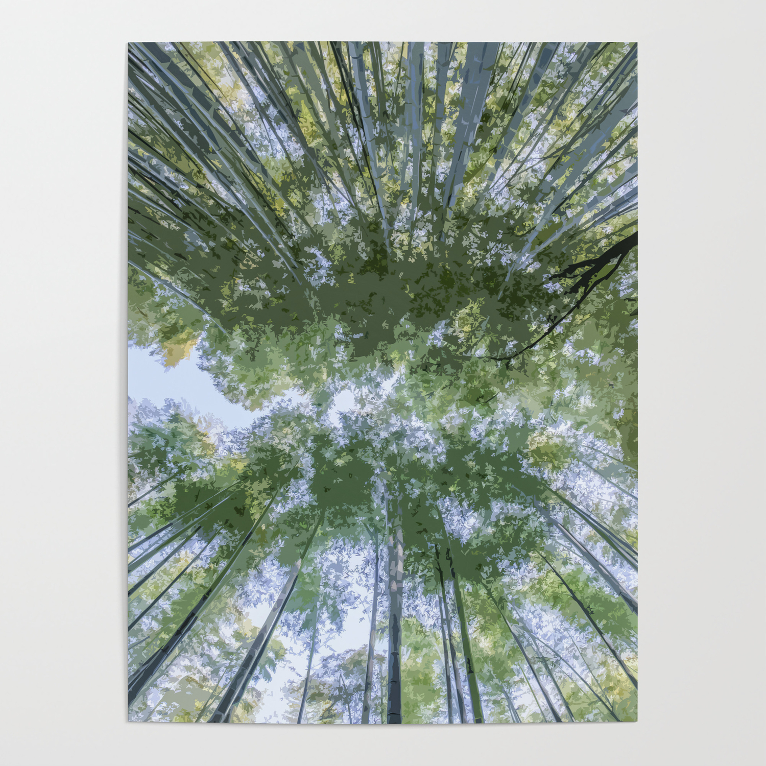 Looking Up The Bamboo Trees And The Sky Poster By Hommie Society6
