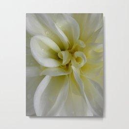 Nature's Dance in White Metal Print