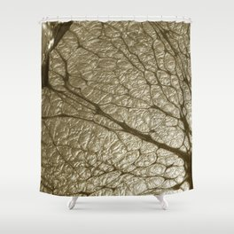 ChampagneCola Shower Curtain