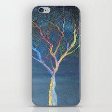 Rainbow Trees iPhone & iPod Skin