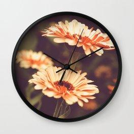 Salmon Colored Fields Wall Clock