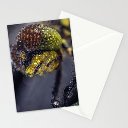 Dragonfly Selfie Stationery Cards