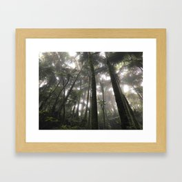 Tropical Jungle - Palm Trees Framed Art Print