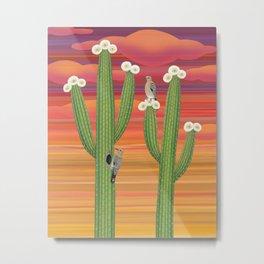 gila woodpeckers on saguaro cactus Metal Print