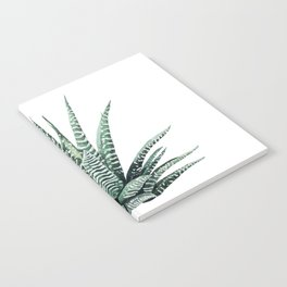 Haworthia Fasiata Notebook