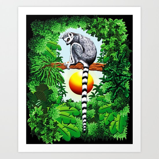 Ring-Tailed Lemur of Madagascar  Art Print