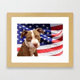 American Pitbull puppy Framed Art Print