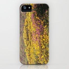 Dartmoor #2 iPhone Case