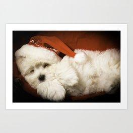 Sleepy Santa Puppy Art Print
