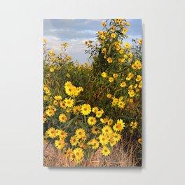 Marsh Wildflowers 5 Metal Print
